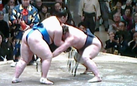 20150121 栃ノ心ー逸ノ城