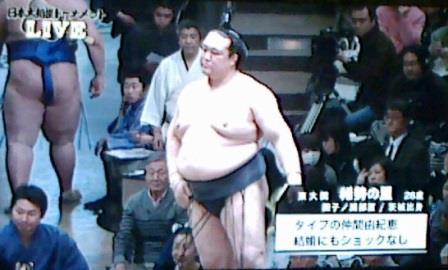 20150208 大相撲トーナメント 稀勢の里紹介
