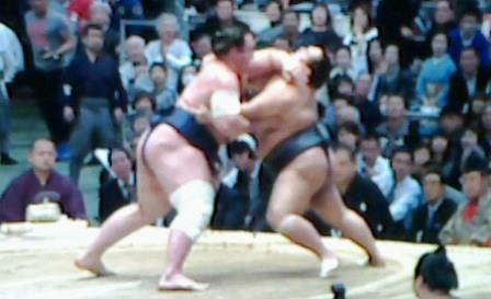 20150313 豊ノ島栃ノ心