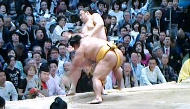 20150320 松鳳山2