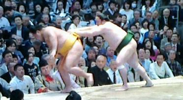 20150320 松鳳山3