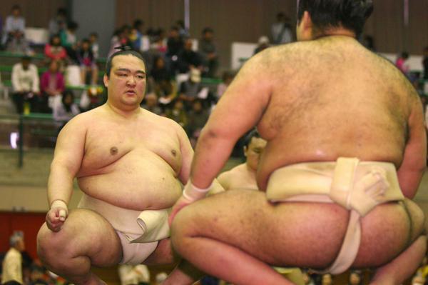 20150424 稀勢の里 相撲協会公式