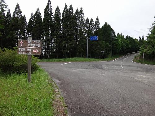 DSC01443.jpg