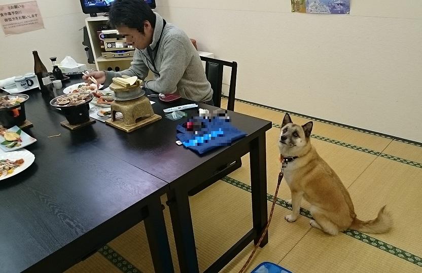 泊崎夕食2