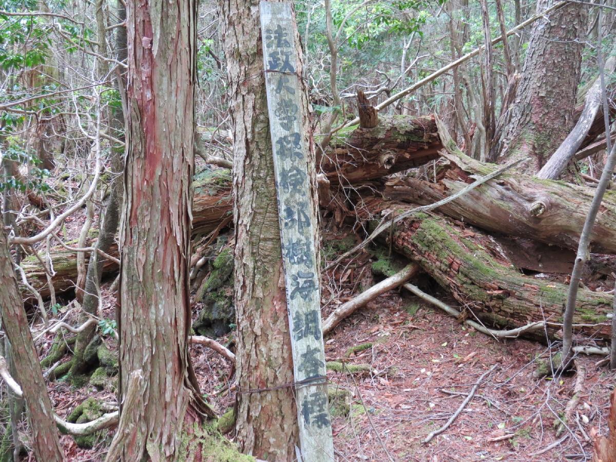 富士山隠れスポット 軽水風穴07
