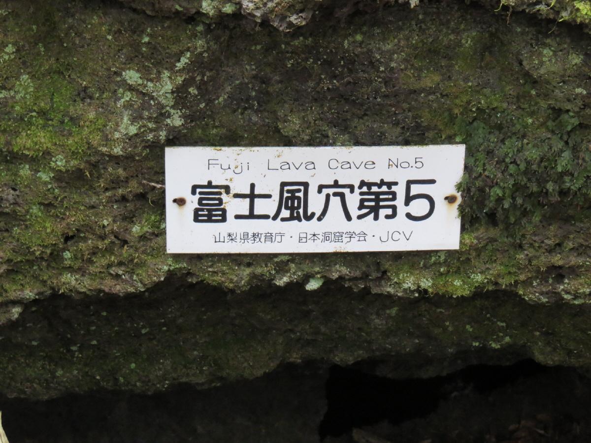 富士山隠れスポット富士風穴5-1