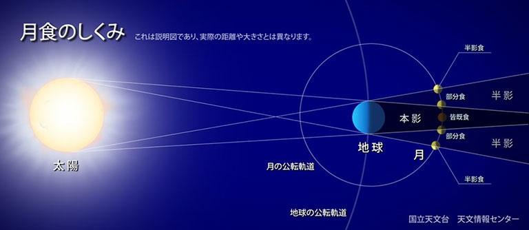 about-mgessyoku.jpg