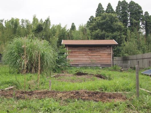 garden20150628 - 12