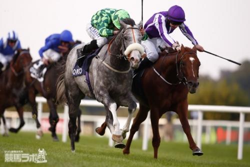【競馬】愛チャンにエピファ・ルージュなど日本馬7頭が登録