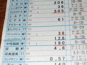 5/12 血液検査結果