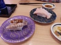 4/26 シャコ、びんトロ  がってん寿司
