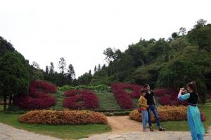 Sapa_Hamrong_mountain_1308-106.jpg
