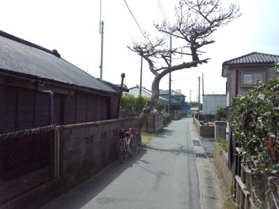 外房 銚子-御宿