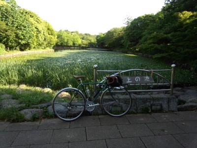 三ツ池 深緑