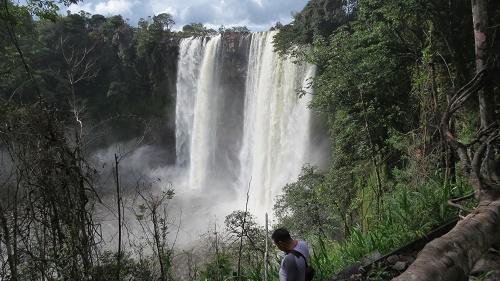 サバンナ7滝