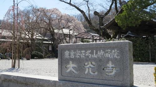 綱五郎5寺