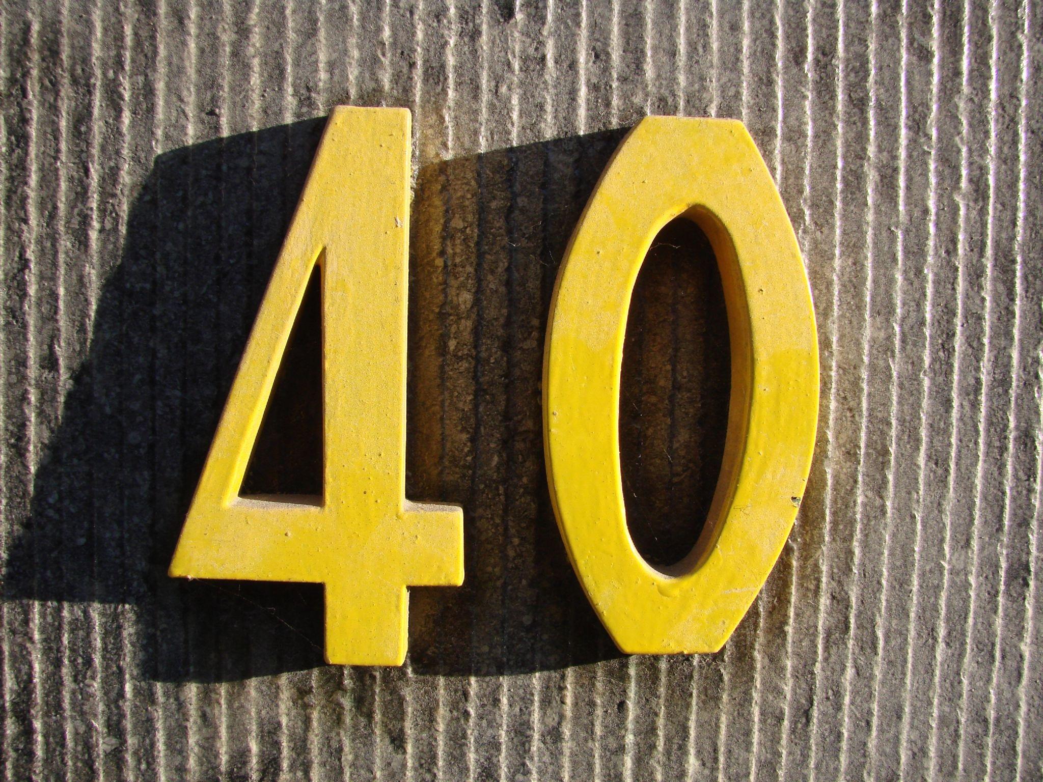40.jpg