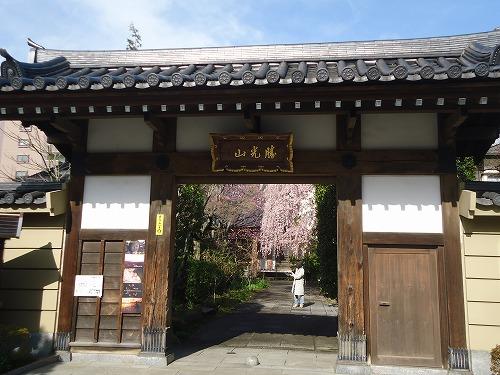 1504tokusenji001.jpg