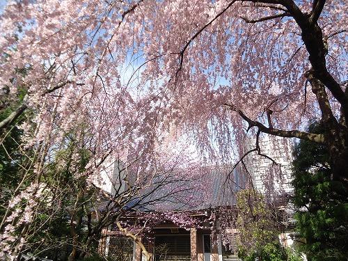 1504tokusenji005.jpg