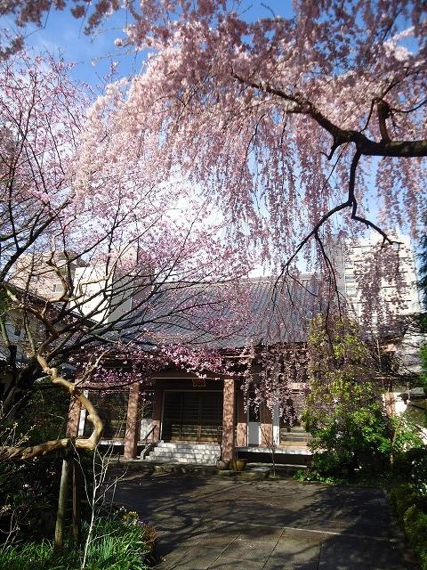 1504tokusenji006.jpg