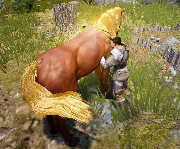 馬にぺたぺた