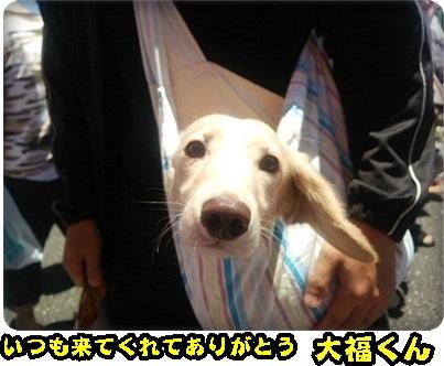 おんぷADSC_1408