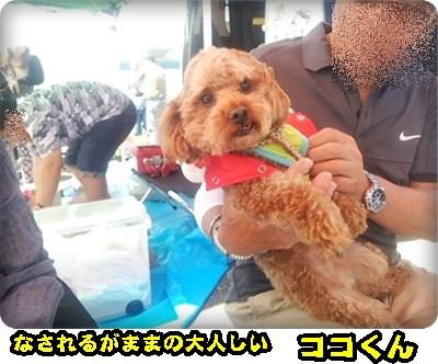 おんぷADSC_1401