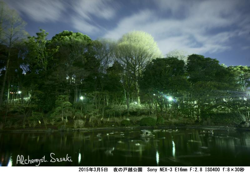 夜の戸越公園DSC08126