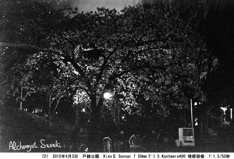 夜桜721-6