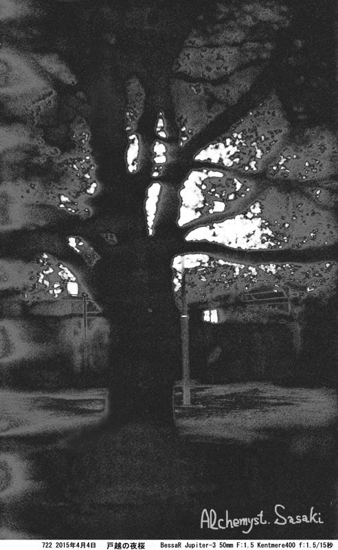 夜桜722-2 Ⅱ