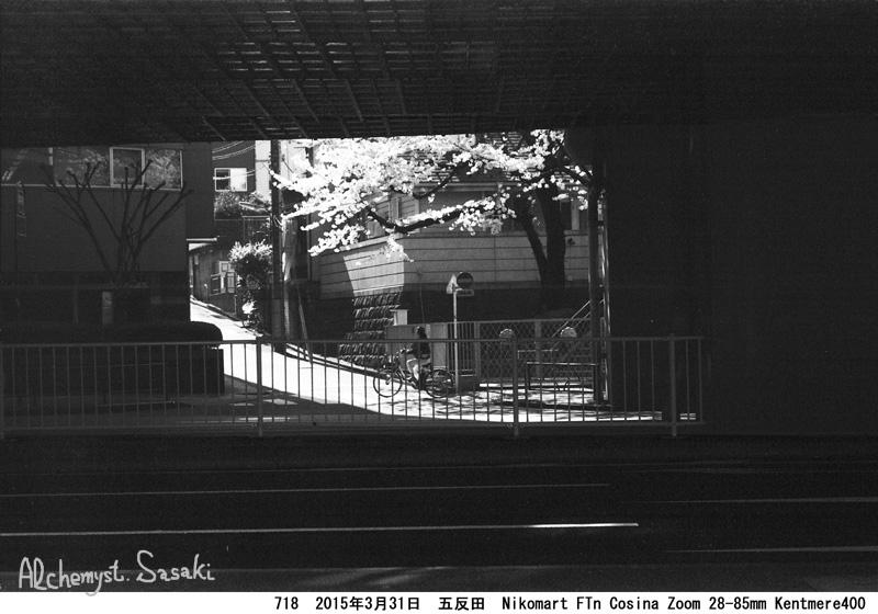 桜718-35