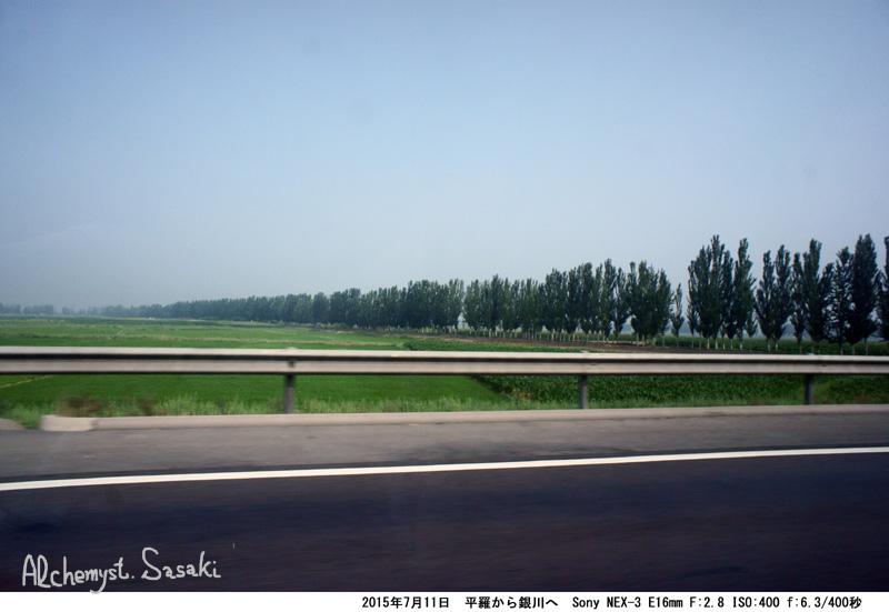 遥かなる寧夏DSC02750