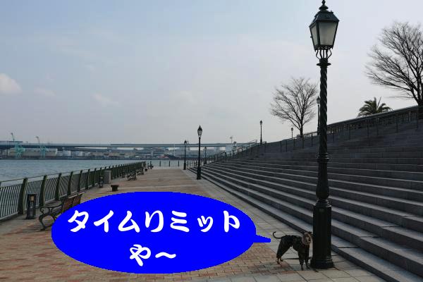 IMG_0377_convert_20150212225754.jpg