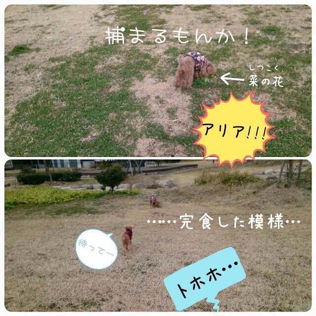 20150131001117af8.jpg