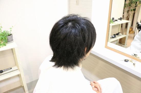 IMG_4817.jpg