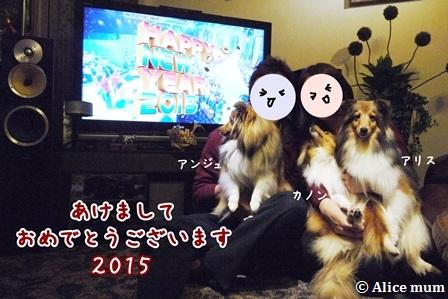 1m_2015010110020295f.jpg