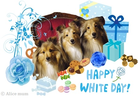 Happy Whiteday 2015 m