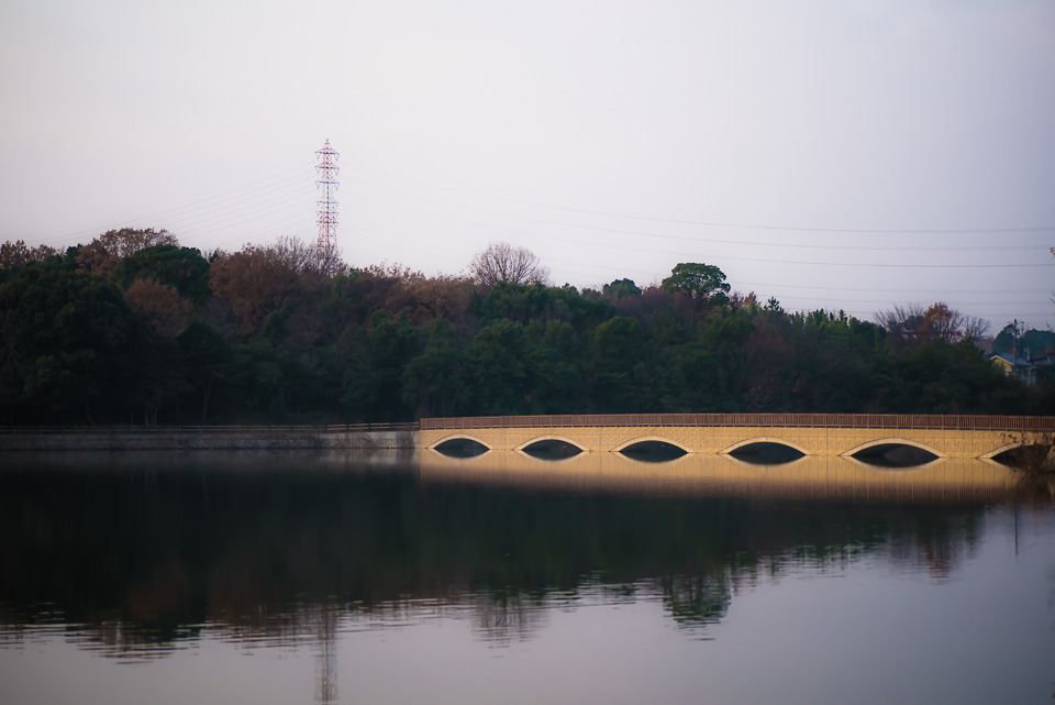 20141231-DSC_0175.jpg
