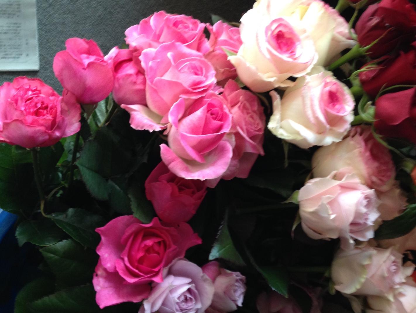 moblog_fb68d97d.jpg