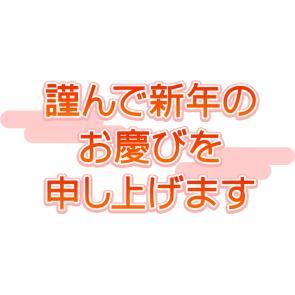 mji_dsm_for_20ss_thl.jpg
