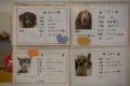 20150213_dogs_保護犬カフェ_DSC_ (27)s