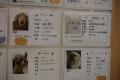 20150213_dogs_保護犬カフェ_DSC_ (30)s