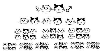増える猫s