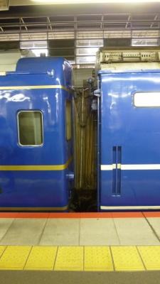 P1000105.jpg