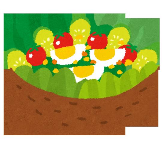 サラダイラスト