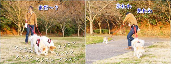 20150308_2.jpg