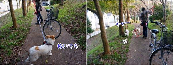 20150318_6.jpg
