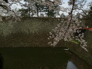 20150420 会津鶴ヶ城-15