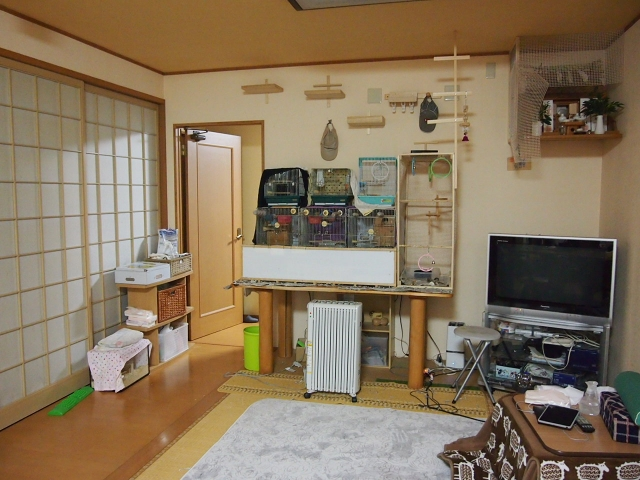 chiisaigazou017_20150216191127d58.jpg