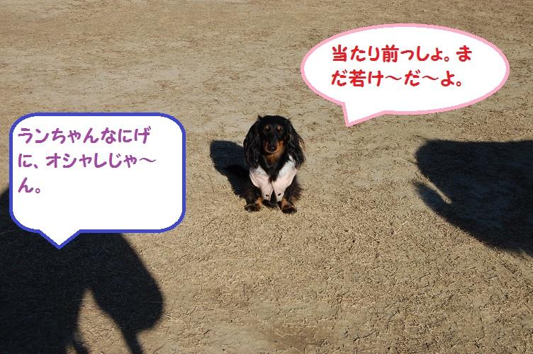 2015suirannNo4.jpg